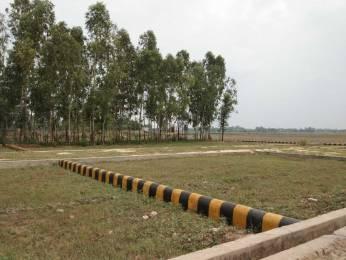 1000 sqft, Plot in Builder VAIDIK VIHAR Lucknow Raebareli Road, Lucknow at Rs. 2.5000 Lacs