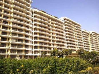 1110 sqft, 2 bhk Apartment in TDI Kingsbury Apartments Kundli, Sonepat at Rs. 8500