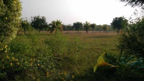 9148 sqft, Plot in Builder Project Annur Avinashi Mettupalayam Road, Coimbatore at Rs. 31.5000 Lacs