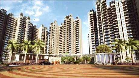 1425 sqft, 2 bhk Apartment in SS The Coralwood Sector 84, Gurgaon at Rs. 66.0000 Lacs