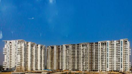 2480 sqft, 3 bhk Apartment in Builder Falcon Views Chandigarh International Airport, Chandigarh at Rs. 1.3000 Cr