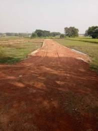 1200 sqft, Plot in Builder Sai Nagar Pipili Pipili Toll Plaza, Bhubaneswar at Rs. 6.0000 Lacs