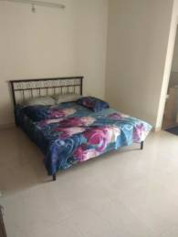 1369 sqft, 2 bhk Apartment in RNS Shanthi Nivas Yeshwantpur, Bangalore at Rs. 35000