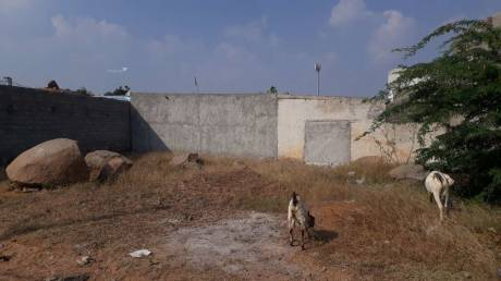 900 sqft, Plot in Builder Project Shaheen Nagar Habeeb Colony, Hyderabad at Rs. 9.0000 Lacs