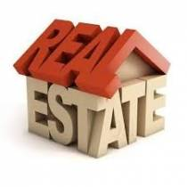 Real Estate Consulting Agency