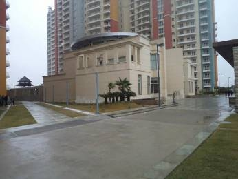 1420 sqft, 2 bhk Apartment in BPTP The Resort Sector 75, Faridabad at Rs. 10000