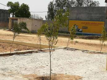 900 sqft, Plot in Builder Project Sector 88, Faridabad at Rs. 8.0000 Lacs