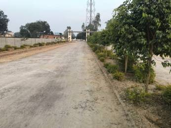 1000 sqft, Plot in Builder kashiyana Varanasi Road, Varanasi at Rs. 5.0000 Lacs