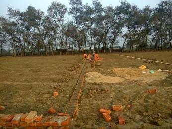 1000 sqft, Plot in Builder Mountain haiven Mirzapur Ghorawal Road, Mirzapur at Rs. 3.5000 Lacs