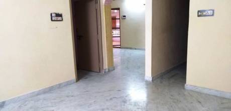 1450 sqft, 3 bhk Apartment in Builder dolphine esates Kamakoti Nagar, Vijayawada at Rs. 15000