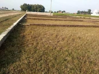 1000 sqft, Plot in Builder Chandrok kashiyana Sarnath, Varanasi at Rs. 5.0000 Lacs