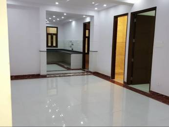 810 sqft, 3 bhk BuilderFloor in Builder Project Shaheen Bagh Jamia Nagar, Delhi at Rs. 50.0000 Lacs