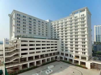 619 sqft, 1 bhk Apartment in DLF My Pad Gomti Nagar, Lucknow at Rs. 47.0000 Lacs