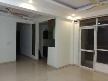 1385 sqft, 3 bhk Apartment in Prateek Laurel Sector 120, Noida at Rs. 14000