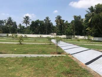 2178 sqft, Plot in Builder Green ARK Kakkanad Pallikara Road, Kochi at Rs. 22.5000 Lacs