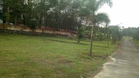 2178 sqft, Plot in Builder Green casa Kakkanad Pallikara Road, Kochi at Rs. 26.2500 Lacs