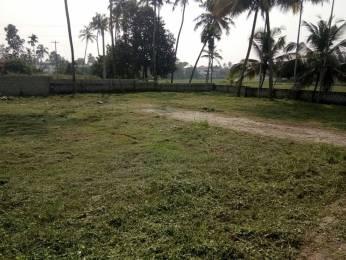 2178 sqft, Plot in Builder Green valancia Kakkanad, Kochi at Rs. 18.7500 Lacs