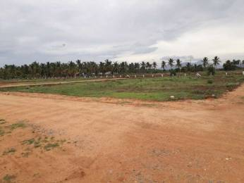 2400 sqft, Plot in Builder othakkalmandabampollachi main road Othakalmandapam, Coimbatore at Rs. 2.5000 Lacs