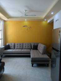 1166 sqft, 2 bhk Apartment in The Hemisphere Golf Suites PI, Greater Noida at Rs. 48.0000 Lacs