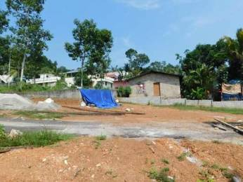 4356 sqft, Plot in Builder Project Peyad, Trivandrum at Rs. 41.0000 Lacs