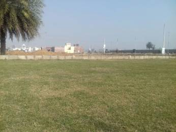 990 sqft, Plot in Builder Ploting New Zirakpur punjab, Chandigarh at Rs. 26.3890 Lacs