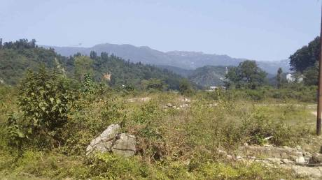 1800 sqft, Plot in Builder Project Birpur Road, Dehradun at Rs. 25.0000 Lacs