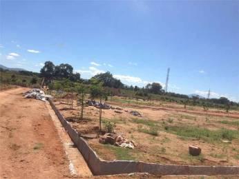 5000 sqft, Plot in Builder Project Chinniyampalayam, Coimbatore at Rs. 2.5000 Cr