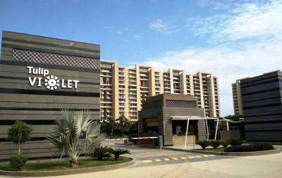 2010 sqft, 4 bhk Apartment in Tulip Violet Sector 69, Gurgaon at Rs. 1.3500 Cr