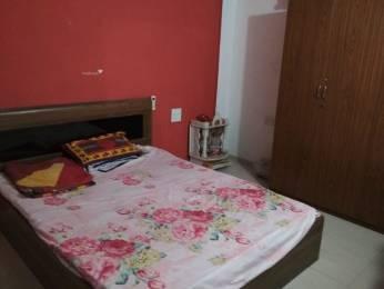 418 sqft, 1 bhk Apartment in Dreams Aakruti Plot No 3 Wings A B Hadapsar, Pune at Rs. 12500