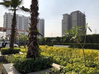1950 sqft, 3 bhk Apartment in Shree Shree Vardhman Victoria Sector 70, Gurgaon at Rs. 97.0000 Lacs