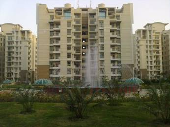 1265 sqft, 3 bhk Apartment in Purvanchal Silver City 2 PI, Greater Noida at Rs. 52.0000 Lacs