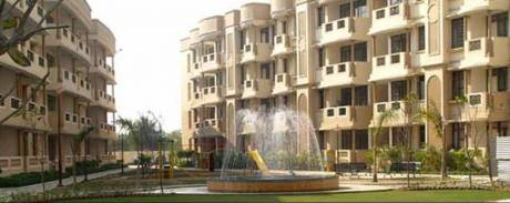 1350 sqft, 3 bhk Apartment in Ashiana Orchid Gamma 2, Greater Noida at Rs. 15000