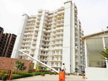 1500 sqft, 3 bhk Apartment in Value Meadows Vista1 Raj Nagar Extension, Ghaziabad at Rs. 40.0000 Lacs