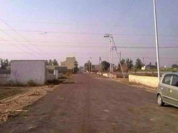 8604 sqft, Plot in Builder Project Punjab House Fed. Housing Society, Amritsar at Rs. 35.0000 Lacs