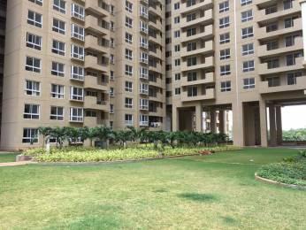 1499 sqft, 2 bhk Apartment in Bhartiya City Builders Nikoo Homes Thanisandra, Bangalore at Rs. 24000