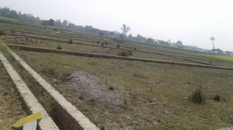 1000 sqft, Plot in Builder Paradise gardan Sitapur Road, Lucknow at Rs. 4.0000 Lacs