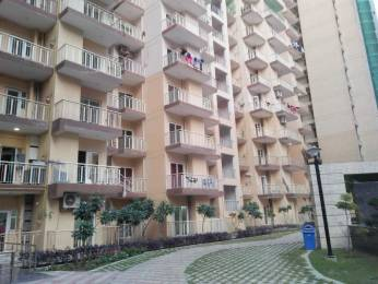 842 sqft, 2 bhk Apartment in Builder French apartments Noida Extn, Noida at Rs. 29.8910 Lacs