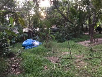 161 sqft, Plot in Builder Project Irinjalakuda Kattoor Road, Thrissur at Rs. 1.5000 Lacs