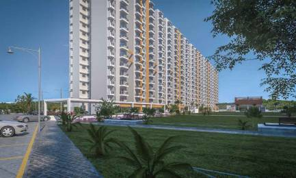1300 sqft, 3 bhk Apartment in Builder Project Sangowal Road, Ludhiana at Rs. 39.0000 Lacs
