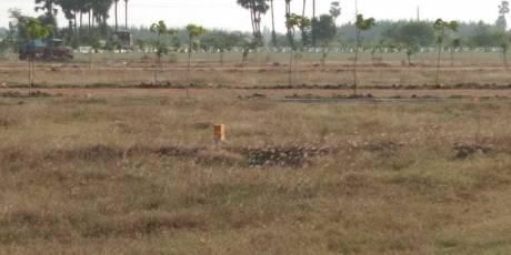 1800 sqft, Plot in Prakruti Venkata Sai Homes Achutapuram, Visakhapatnam at Rs. 18.0000 Lacs