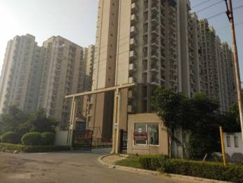 1299 sqft, 3 bhk Apartment in Aditya World City NH 24 Highway, Ghaziabad at Rs. 45.0000 Lacs