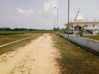 1000 sqft, Plot in Builder zaire sparkle valley Civil Lines, Allahabad at Rs. 2.5000 Lacs