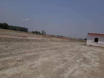 8685 sqft, Plot in Builder Project Dehradun Haridwar Road, Dehradun at Rs. 1.2000 Cr