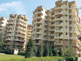 900 sqft, 2 bhk Apartment in Builder Khanna Agency Vikas Puri, Delhi at Rs. 16000