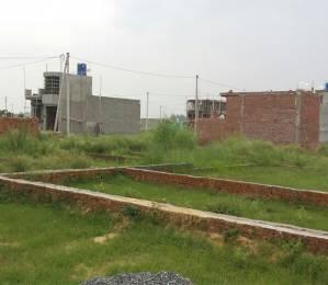 900 sqft, Plot in Builder Project noida expressway, Noida at Rs. 11.0000 Lacs