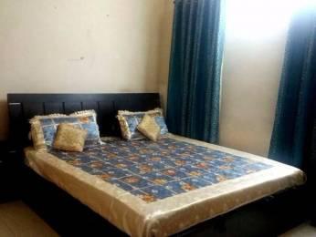 1500 sqft, 2 bhk Apartment in Shalimar Gallant Aliganj, Lucknow at Rs. 40000