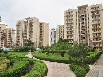 1415 sqft, 3 bhk Apartment in Purvanchal Silver City Sector 93, Noida at Rs. 92.0000 Lacs