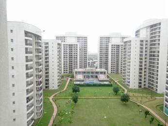 1785 sqft, 3 bhk Apartment in Chintels Paradiso Sector 109, Gurgaon at Rs. 27000