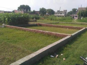 1000 sqft, Plot in Citizen Pearl Jhusi, Allahabad at Rs. 10.0000 Lacs