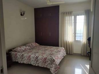 1600 sqft, 2 bhk Apartment in Builder Project Stadium Road, Kochi at Rs. 18000